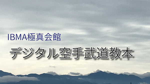 デジタル空手武道教本Info